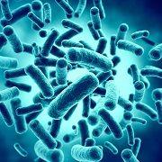 Бактериальная диарея