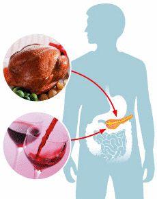 Підшлункова залоза і надлишок інсуліну