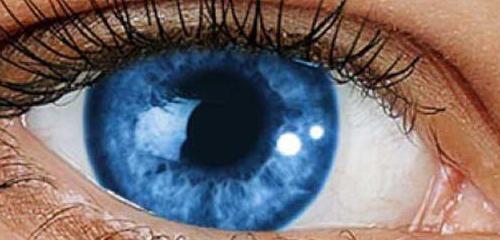 Что такое склеральные линзы