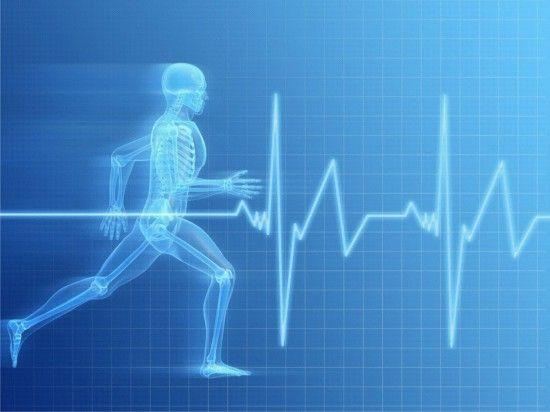 Двигательная активность человека