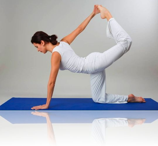 Фитнесвиды, упражнения и польза