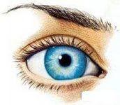 Гимнастика для глаз, упражнения для улучшения зрения