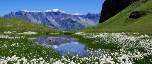 Горный воздухвлияние гор на здоровье человека
