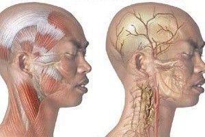 Из-за чего болит череп головы?