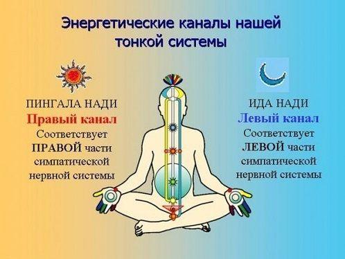 Энергетика человеказалог крепкого здоровья