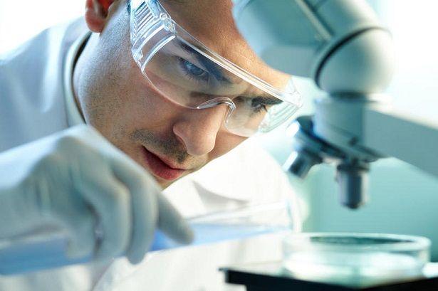 Какие анализы сдать, чтобы провериться на токсакароз?