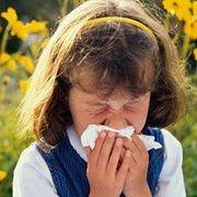 Які глисти викликають алергію, алергічна реакція на гельмінти