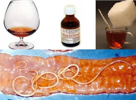 Коньяк и касторка (касторовое масло) от глистов