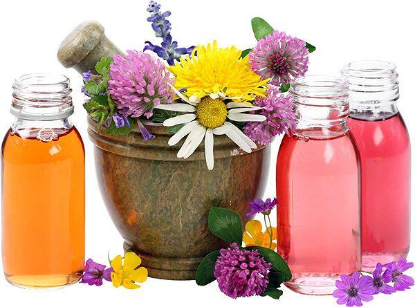 Лечебные травы для женского здоровья