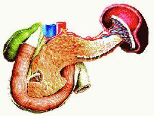 Лечение холецисто-панкреатита и холецистита лекарствами, травами и народными средствами, как лечить?