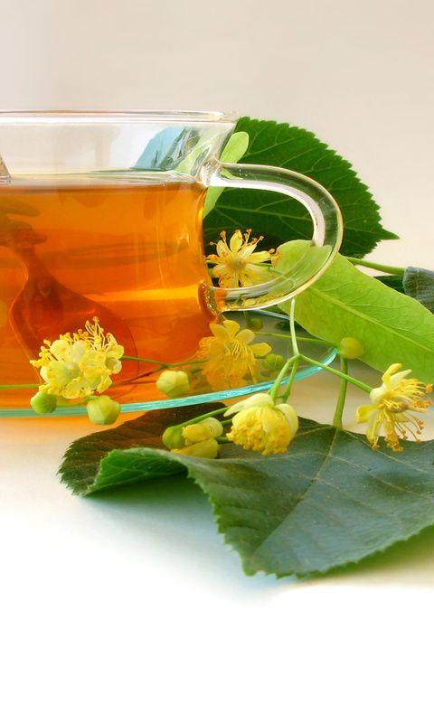 Лечение токсокароза народными средствами