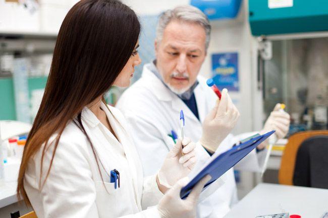 Лечение токсокароза у взрослого человека, как и чем лечить глистов-токсокар у людей?