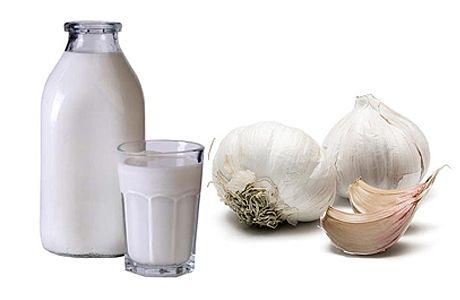Молоком з часником проти глистів у дітей і дорослих, як пити?