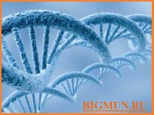 Новые методы терапии серозного рака эндометрия