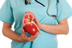 Острый и хронический пиелонефрит: причины и симптомы