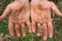 Почему и отчего глисты у человека?