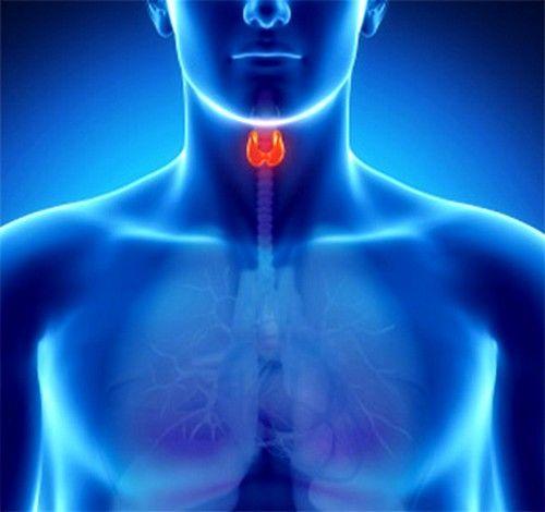 Подготовка и проведение анализа крови на уровень ттг