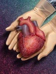 Причины, диагностика и лечение амилоидоза сердца