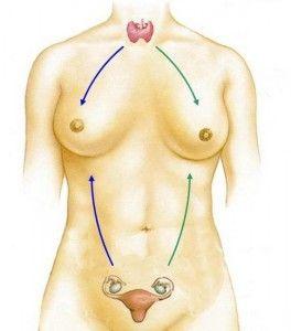 Методы гормональной терапии