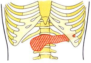 Современные стандарты, курс лечения панкреатита (поджелудочной железы)