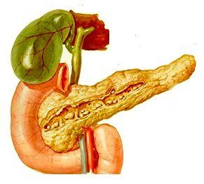 Увеличение размеров поджелудочной железы - причины, симптомы, признаки, почему увеличена?