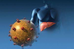 Вирусный гепатит а (болезнь боткина)