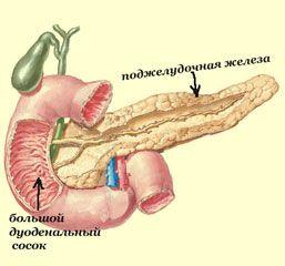 Воспаление поджелудочной железы - панкреатит и его причины, когда и от чего воспаляется?