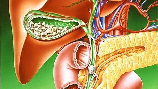 Желчь в поджелудочной железе